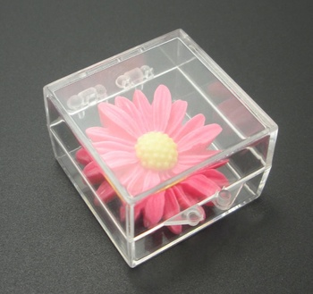 Small clear plastic box with black sponge for pins or medal