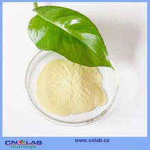 Soybean Extract/ Soybean Isoflavone/ soy isoflavone powder