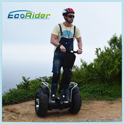 Cheap Off-Road Model Self-Balancing Electric Motorcycle For Sale