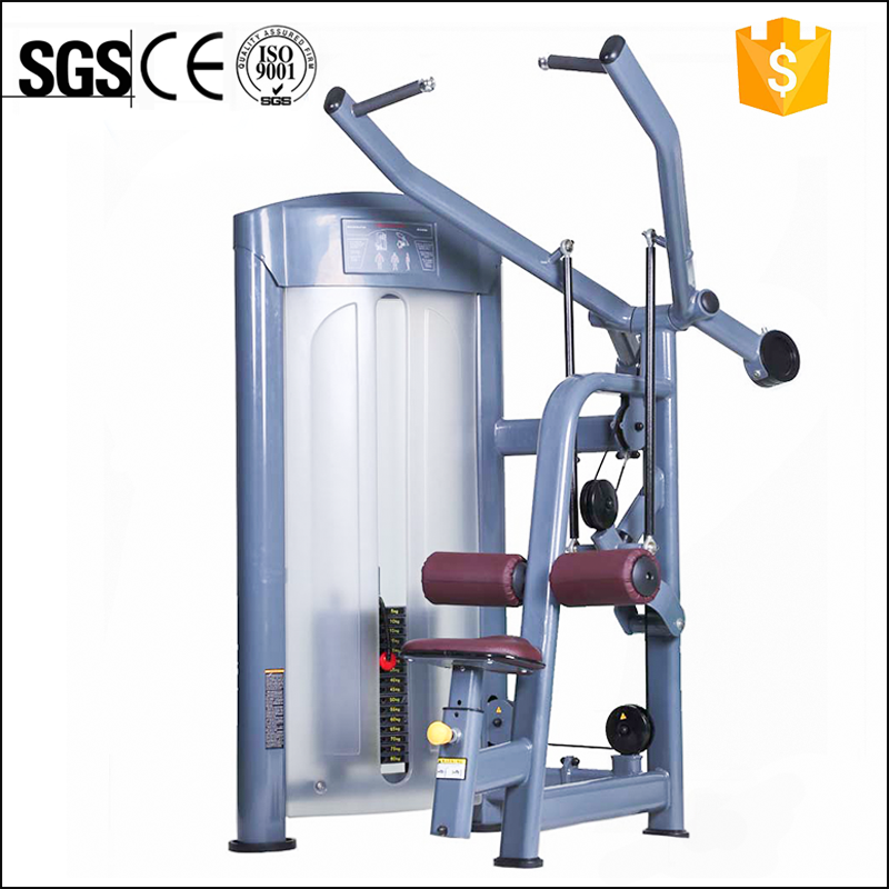 Back Extension/Commercial Gym Machine/Integrated Gym Trainer
