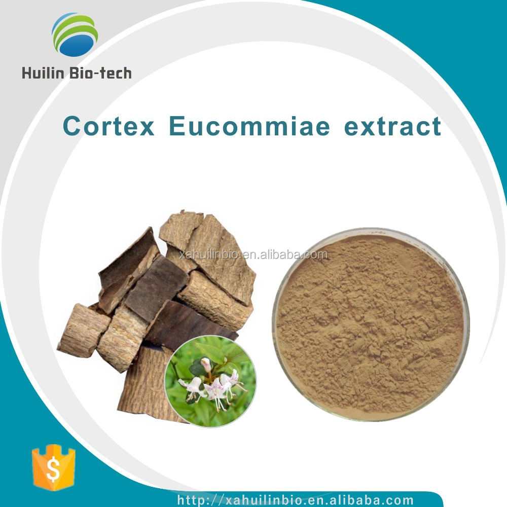Free Sample 10:1, Cortex Eucommiae P.E./Cortex Eucommiae extract Powder