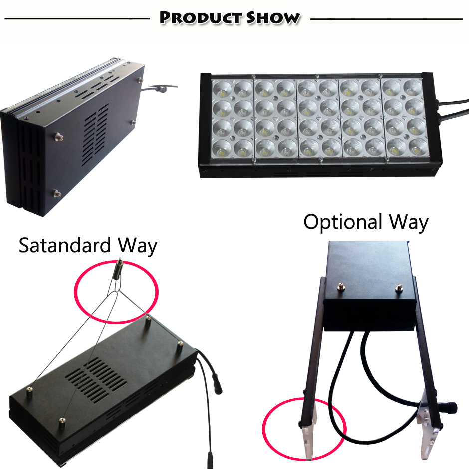Smart Fan DSunY new dimmable programmable led aquarium light with 4 season cycle sunrise sunset