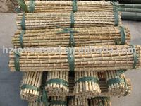 bamboo root cane,bamboo rhizomes,bamboo root sticks