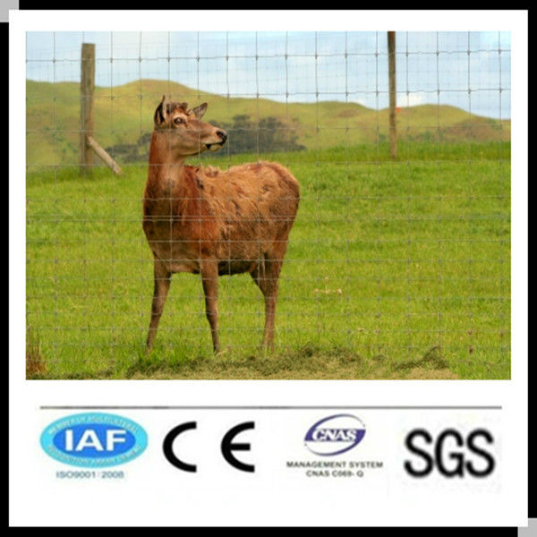Wholesale alibaba China CE&ISO9001 galvanized steel deer fence(pro manufacturer)