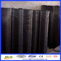 China Suppliers 60 Mesh Plain Steel Net/Black Micron Mesh/Filter Clothing