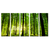 /product-detail/2018-natural-forest-canvas-printing-5-panel-green-tree-picture-wall-art-wholesale-dropship-home-decor-60345006508.html