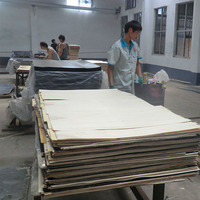 plywood manufacturer poplar white oak veneer plywood