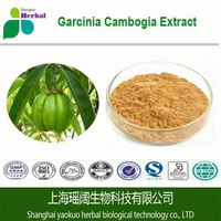 Bestselling plant extract Garcinia Cambogia extract in bulk supply