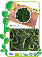 IQF Chopped Spinach good price