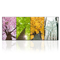1 Panel Four Seasons Tree Picture Wall Art Nature Landscape Wall Poster for Living Room Large Size Ready to Hang
