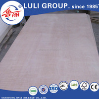 9mm Boards Plywood Type and Outdoor Usage Synthetic Plywood