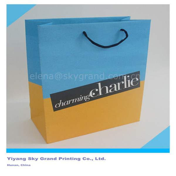 2013 New luxury shopping paper bag for cloth