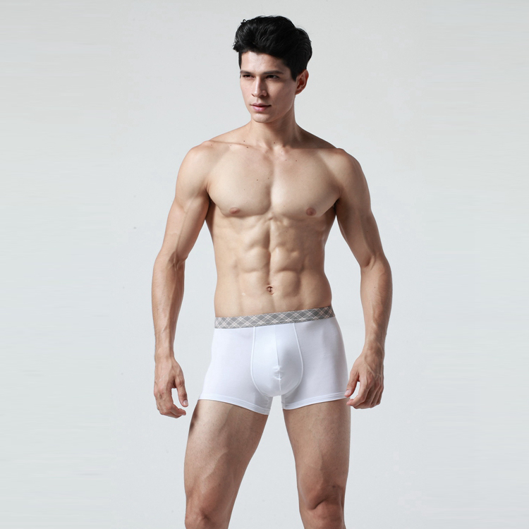 XS--5XL or customize girls boxer brief bamboo underwear for men