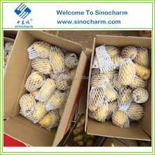 China Supplier Fresh Potato with top quality