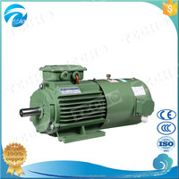 Three Phase Electric Variable Frequency Adjustable Speed Motor