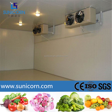 China professional refrigeration equipment manufactory for fruit and vegetable cold room