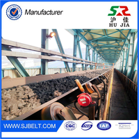 New Products SW Rubber Conveyor Belt Mining Metal Detector