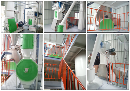 380V 22KW Animal feed Pellet Machine, Chicken feed pellet making machine