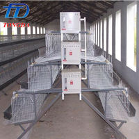 Multifunctional layer egg chicken cage/poultry farm house design for wholesales