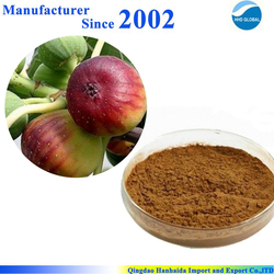 Hot sale & hot cake high quality pure nature Fig Leaf P.E. , Fig Leaf Extract , Fig Leaf Extract Powder