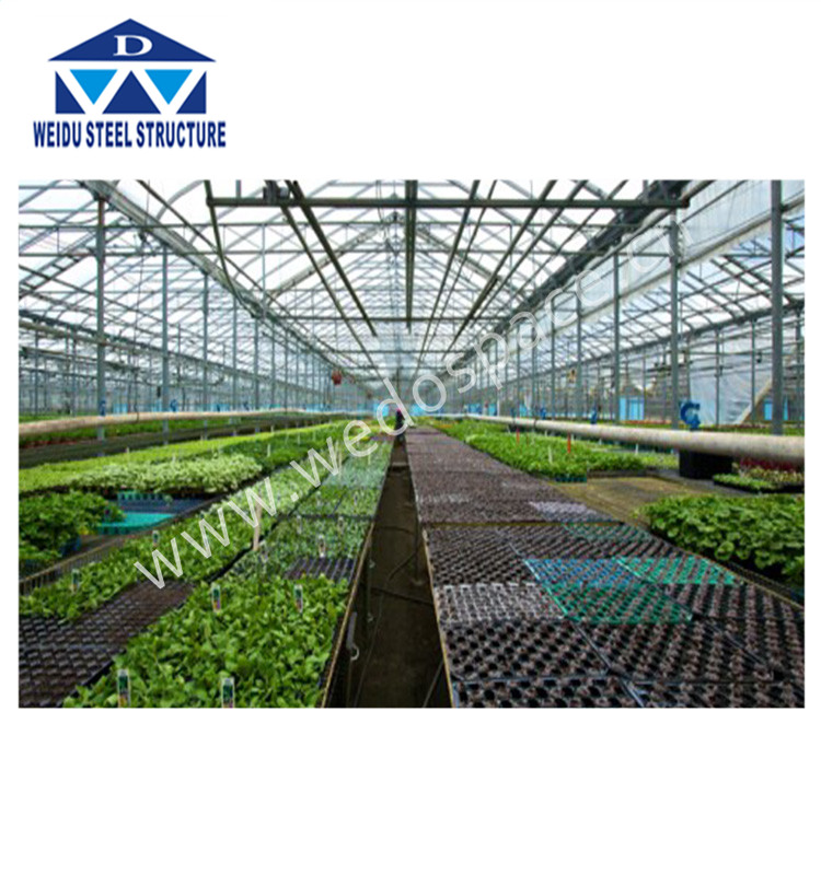 galvanized steel truss greenhouse greenhouse pepper greenhouse used for sale