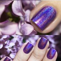 Hot Selling High Quality Holographic Nail