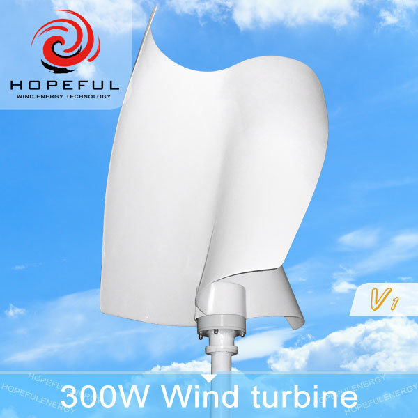 Hot-sale Vertical Axis Wind Turbine 1kw for residential