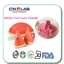 Promotion Watermelon Fruit Juice Powder For Beverage With Free Sample Supply