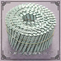 Hot sale Stainless Steel Coil Nails