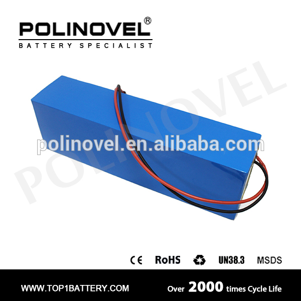 world class quality OEM 48v battery lithium