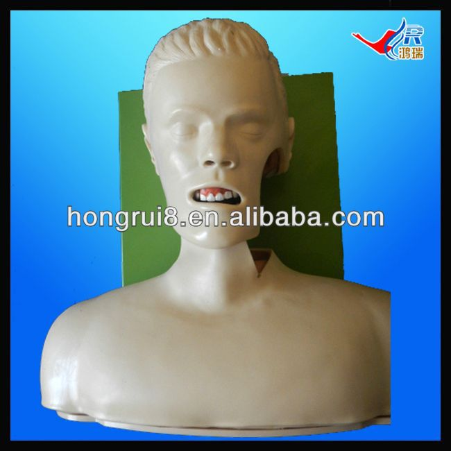 ISO Advanced Electric Airway Intubation model, trachea intubation manikin