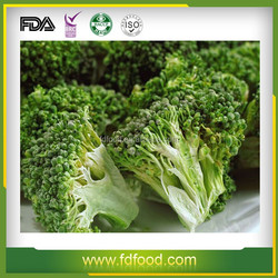 instant food and complementary energy Freeze dried broccoli frozen vegetables