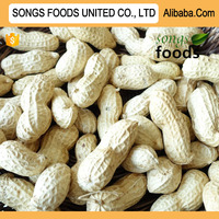 Songs Foods Best Peanuts Healthy And Nutrition