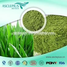 The best whole foods market organic wheatgrass powder Factory price