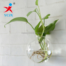 Hand Blown Clear Glass Ball Vase on the Wall