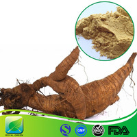 Herbal Plant Extract 40% Isoflavones Kudzu Extract Powder