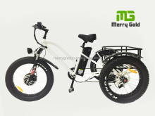 fat tire three wheel rear basket cargo lithium battery disc brake electric trike