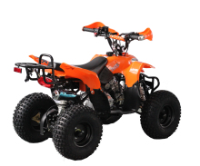 110cc cheap racing chinese quad atv