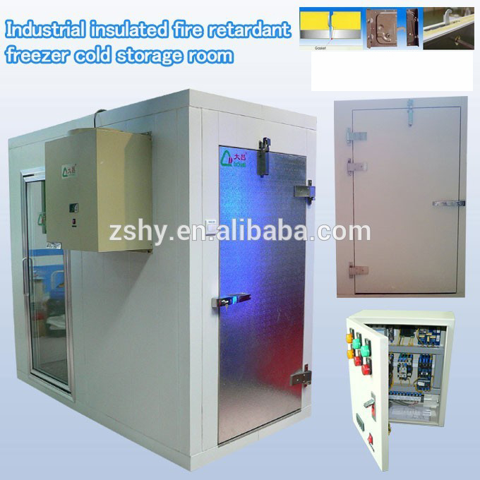 Industrial insulated fire retardant freezer cold storage room