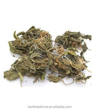 Dried natural Philippine Violet Herb from Viola yedoensis Makino use as orient medicine