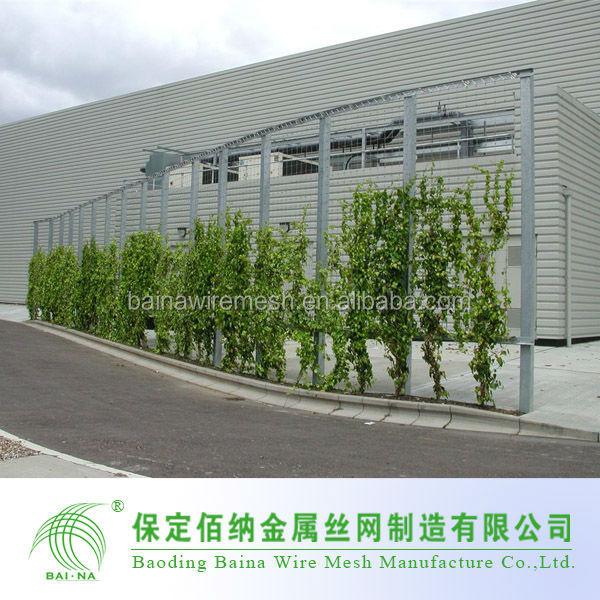en acier inoxydable wire rope mesh net pour mur vert plante grimpante maille alibaba net. Black Bedroom Furniture Sets. Home Design Ideas