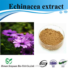 GMP factory supplied herb medicine 100% natural echinacea purpurea extract