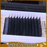 Providing all kinds of mink horse synthetic eyelash extension with free device