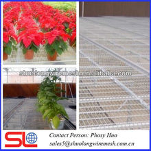 Galvanized flower bed wire mesh panels,greenhouse wire mesh
