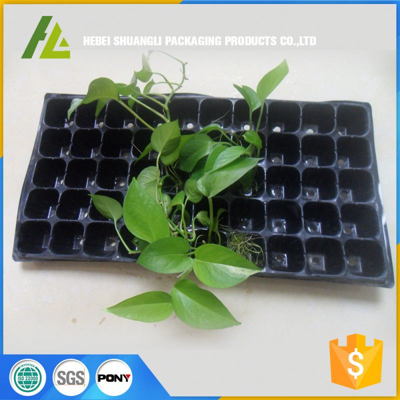 black rectangular hydroponic nursery seeding container