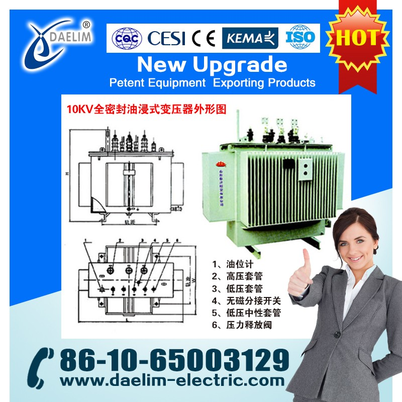 OLTC 315kva 22/0.4kv Oil Immersed Distribution Transformer with Price