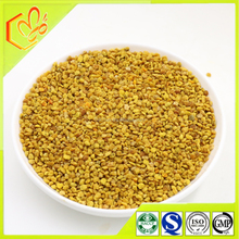 2016 Latest Promotion! Bulk Cheap Organic Corn Bee Pollen With FDA from China Bee Pollen Supplies