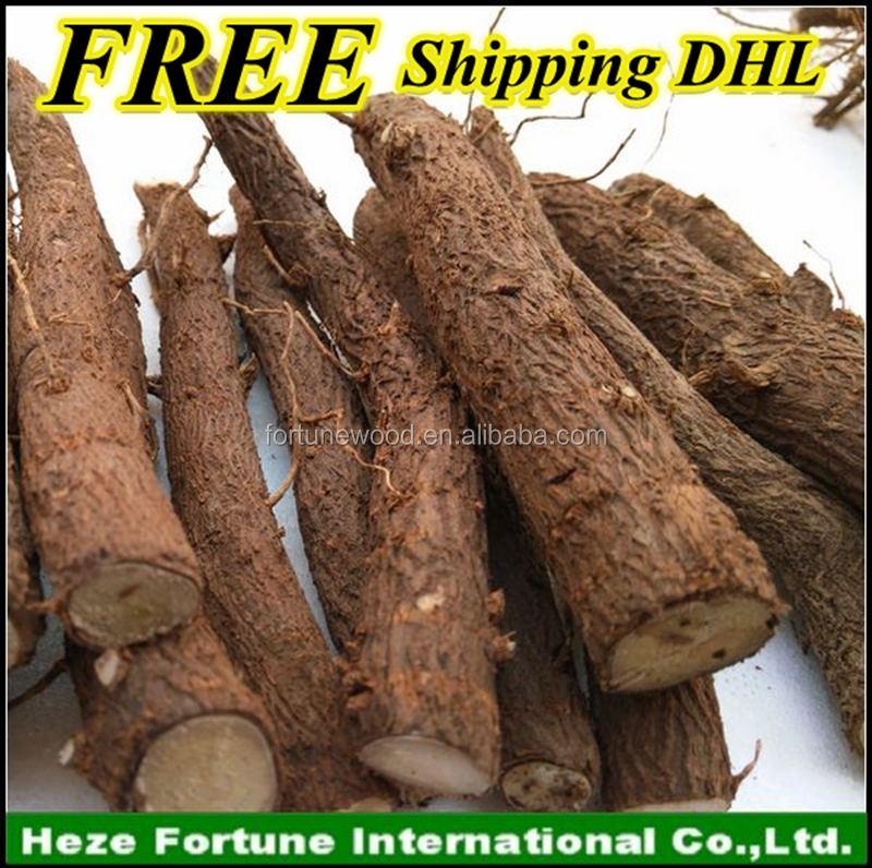 FREE Shipping paulownia root cutting via <strong>DHL</strong>