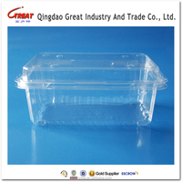 Cherry Tomatoes Container Plastic Disposable Packing Box