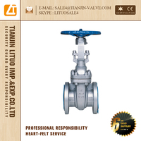 manual stainless steel flat plate gate valve